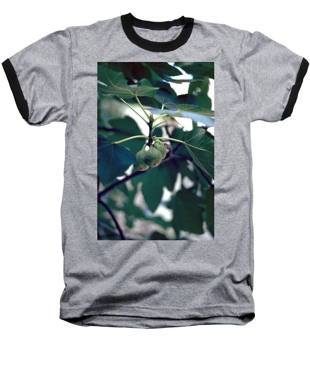 Fig Baseball T-Shirt featuring the photograph Fig by Flavia Westerwelle