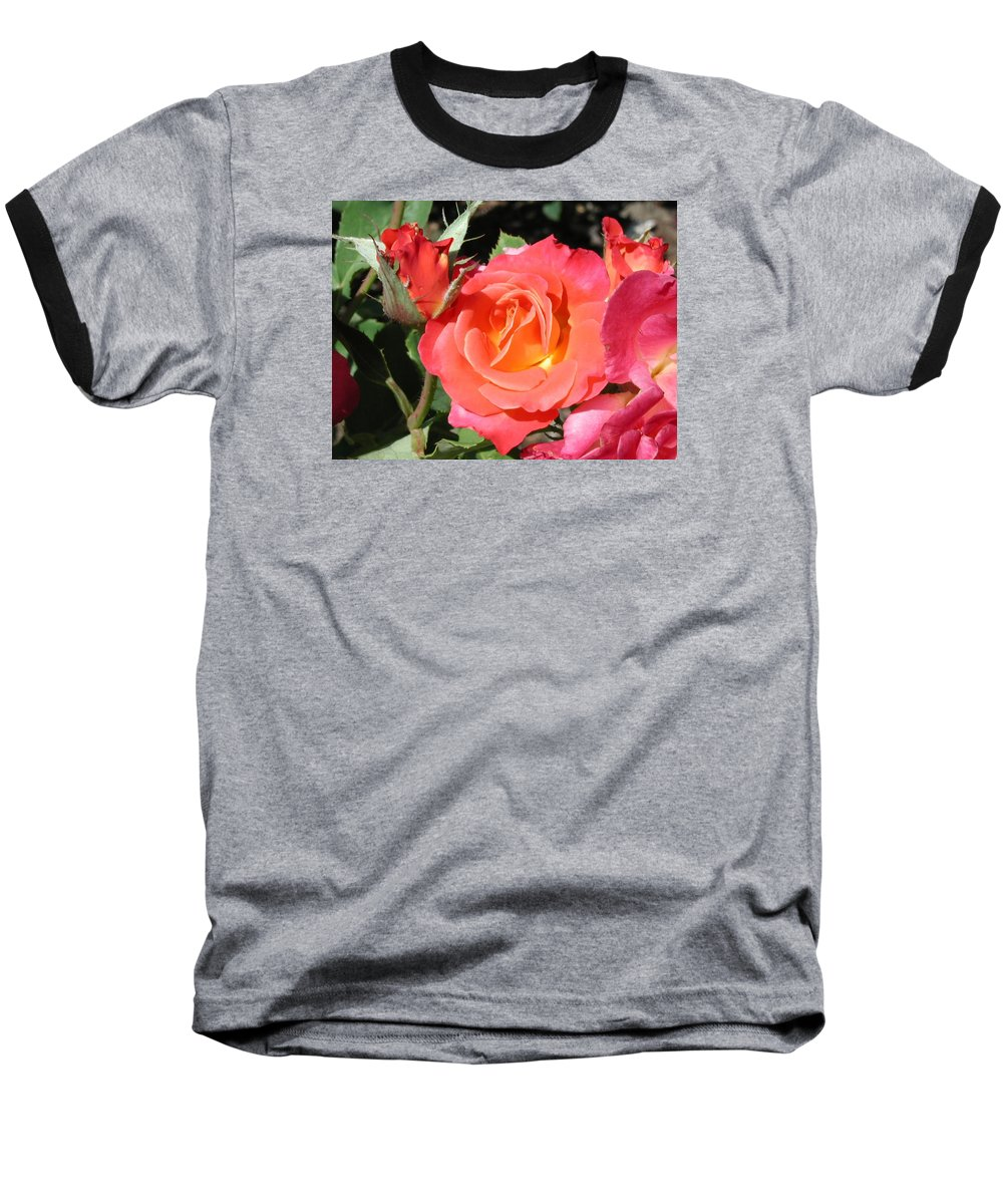 Photograph Baseball T-Shirt featuring the photograph Firey Passion Rose by Dave Martsolf