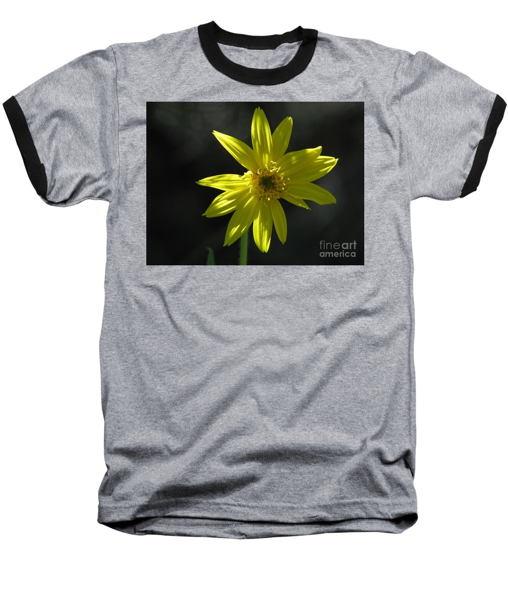 Light Baseball T-Shirt featuring the photograph Floral by Amanda Barcon