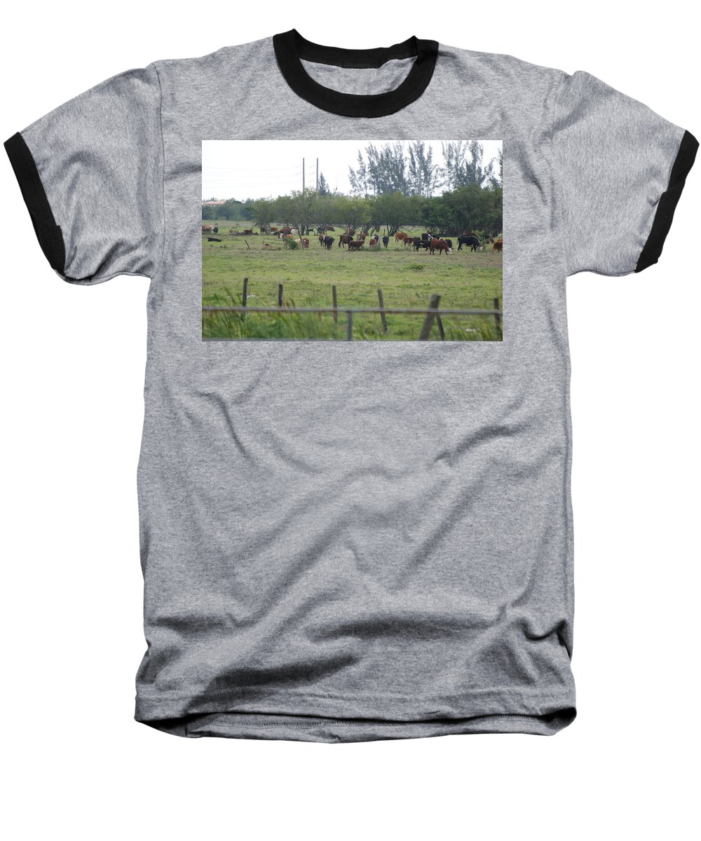 Trees Baseball T-Shirt featuring the photograph Florida Ranch by Rob Hans
