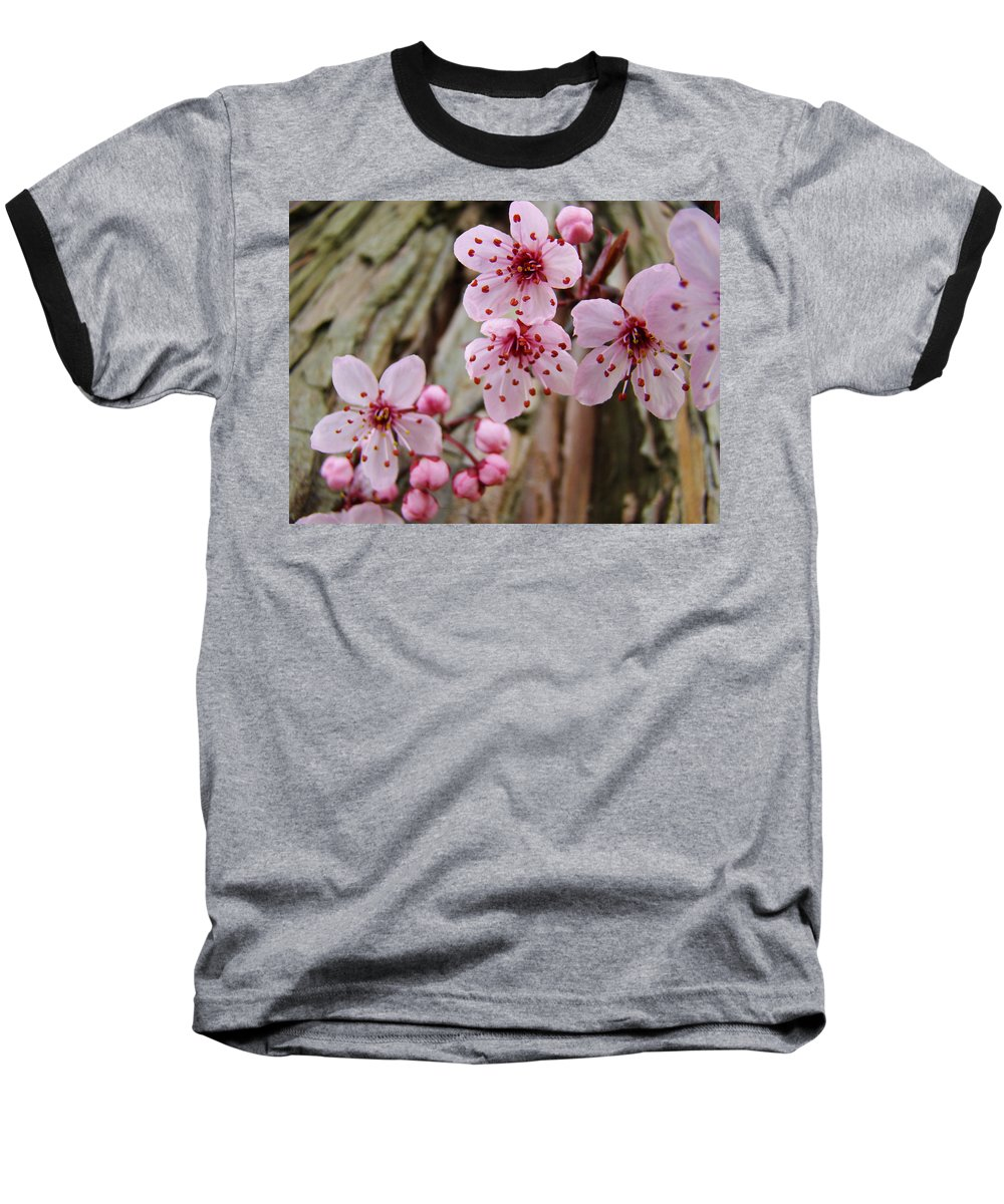 Tree Baseball T-Shirt featuring the photograph Flower Blossoms Pink Tree Blossoms Art Print Giclee Spring Flowers by Baslee Troutman