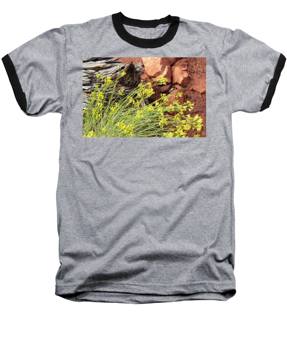 Flower Baseball T-Shirt featuring the photograph Flower Wood And Rock by Marilyn Hunt