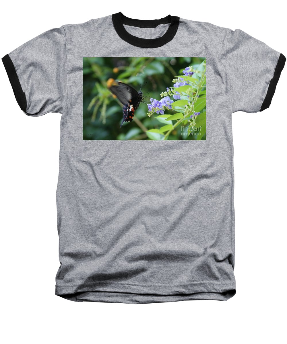 Butterfly Baseball T-Shirt featuring the photograph Fly In Butterfly by Shelley Jones
