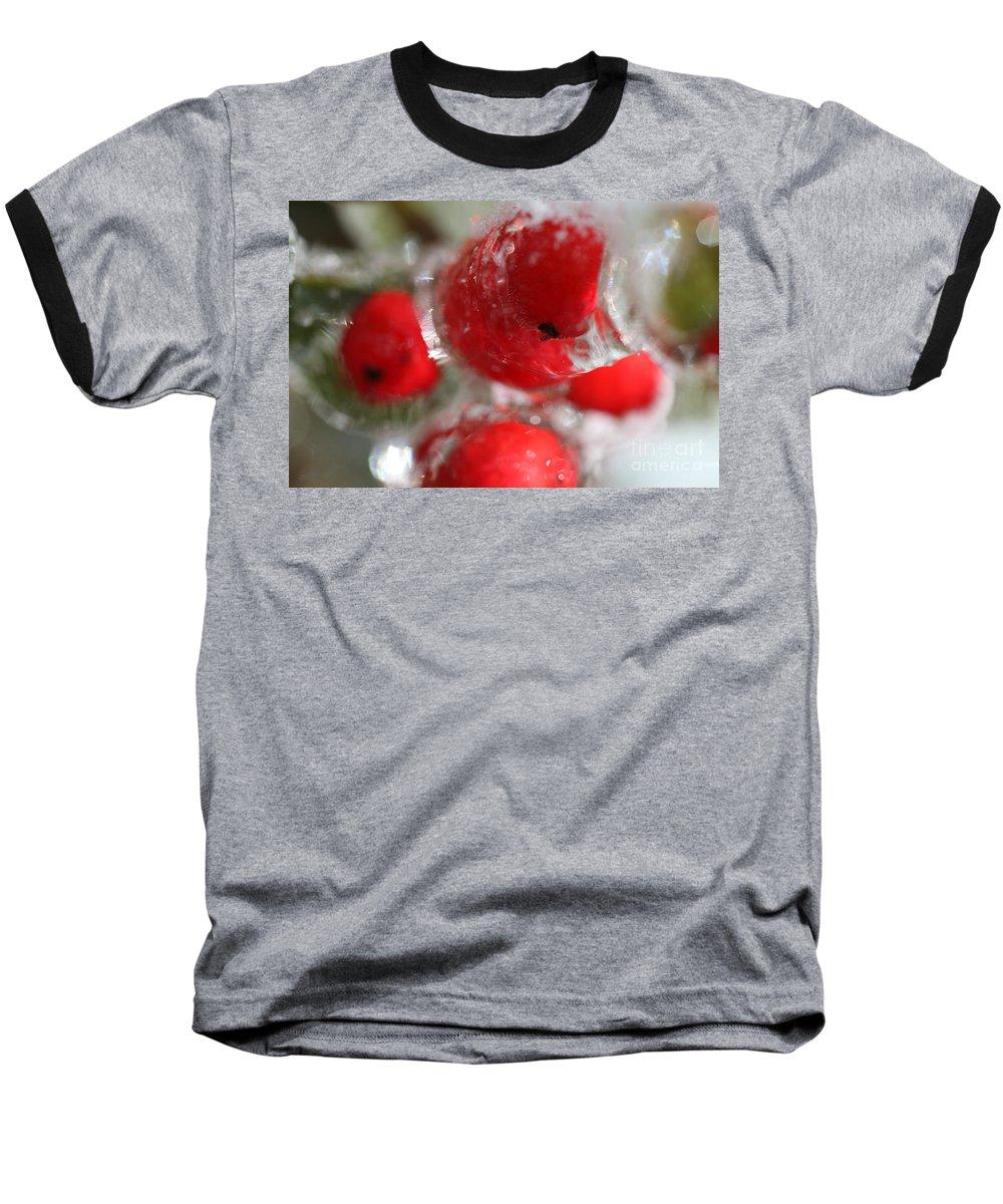 Berries Baseball T-Shirt featuring the photograph Frozen Winter Berries by Nadine Rippelmeyer