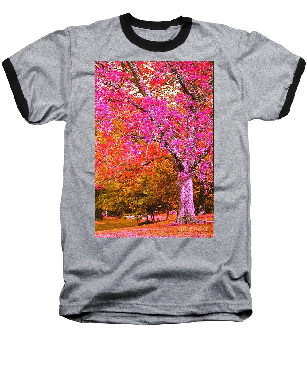 Fuschia Baseball T-Shirt featuring the photograph Fuschia Tree by Nadine Rippelmeyer