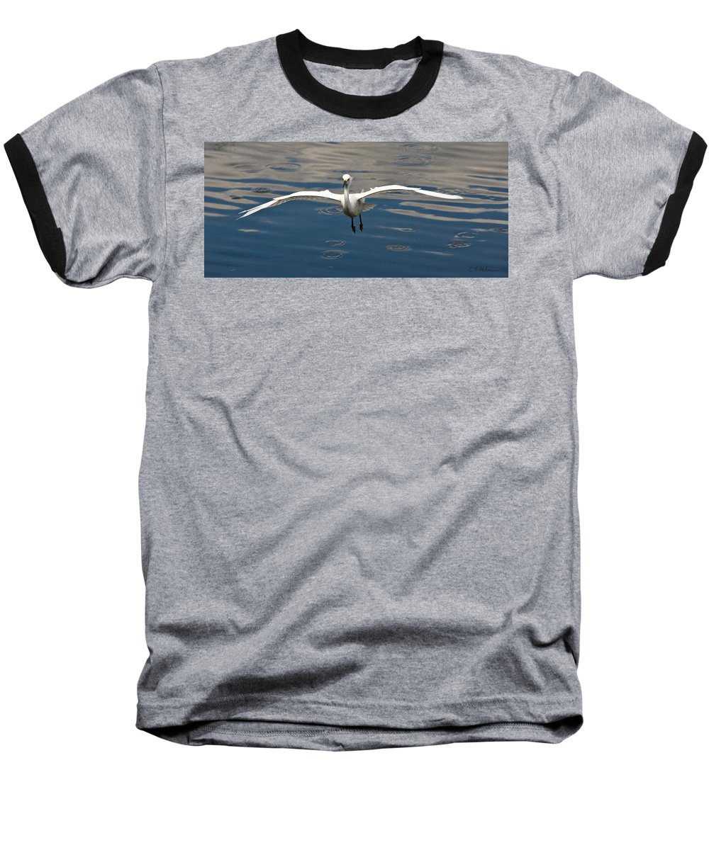 Snowy Egret Baseball T-Shirt featuring the photograph Gear Down by Christopher Holmes