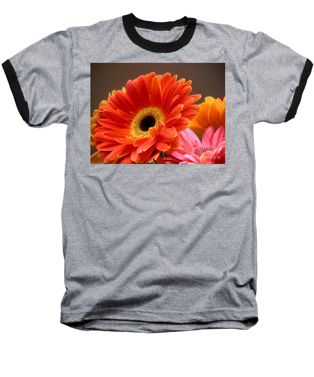 Nature Baseball T-Shirt featuring the photograph Gerbera Daisies - Luminous by Lucyna A M Green