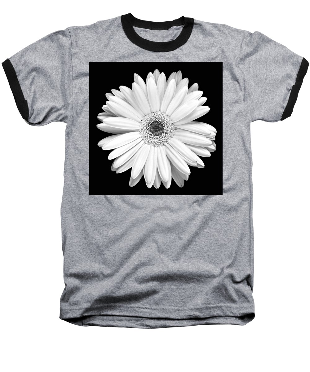 Gerber Baseball T-Shirt featuring the photograph Single Gerbera Daisy by Marilyn Hunt
