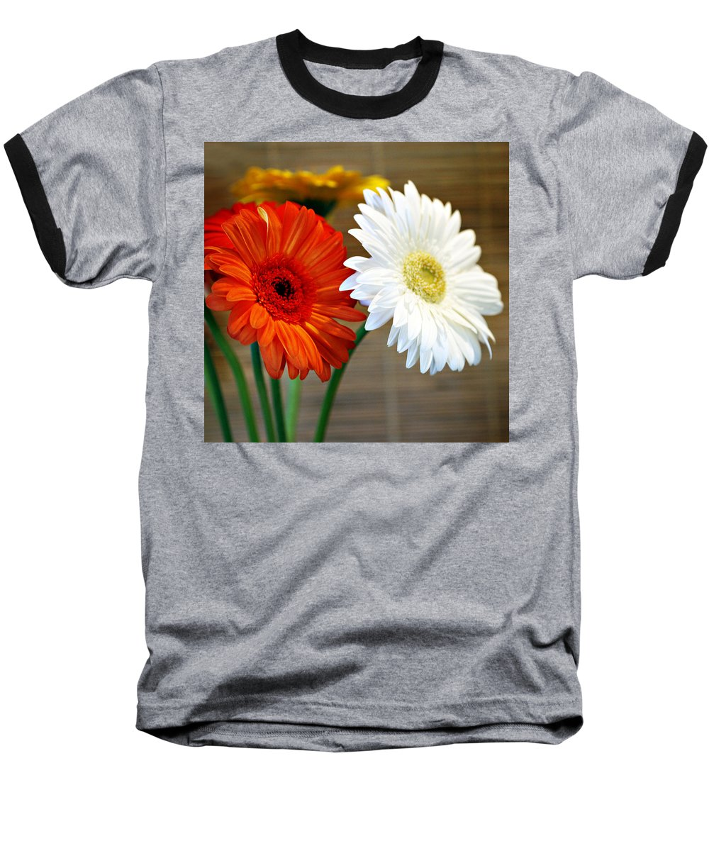 Flower Baseball T-Shirt featuring the photograph Gerbers by Marilyn Hunt