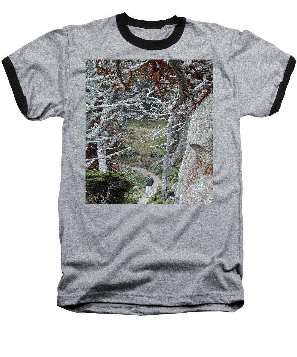 Lichens Baseball T-Shirt featuring the photograph Ghost Trees by Douglas Barnett