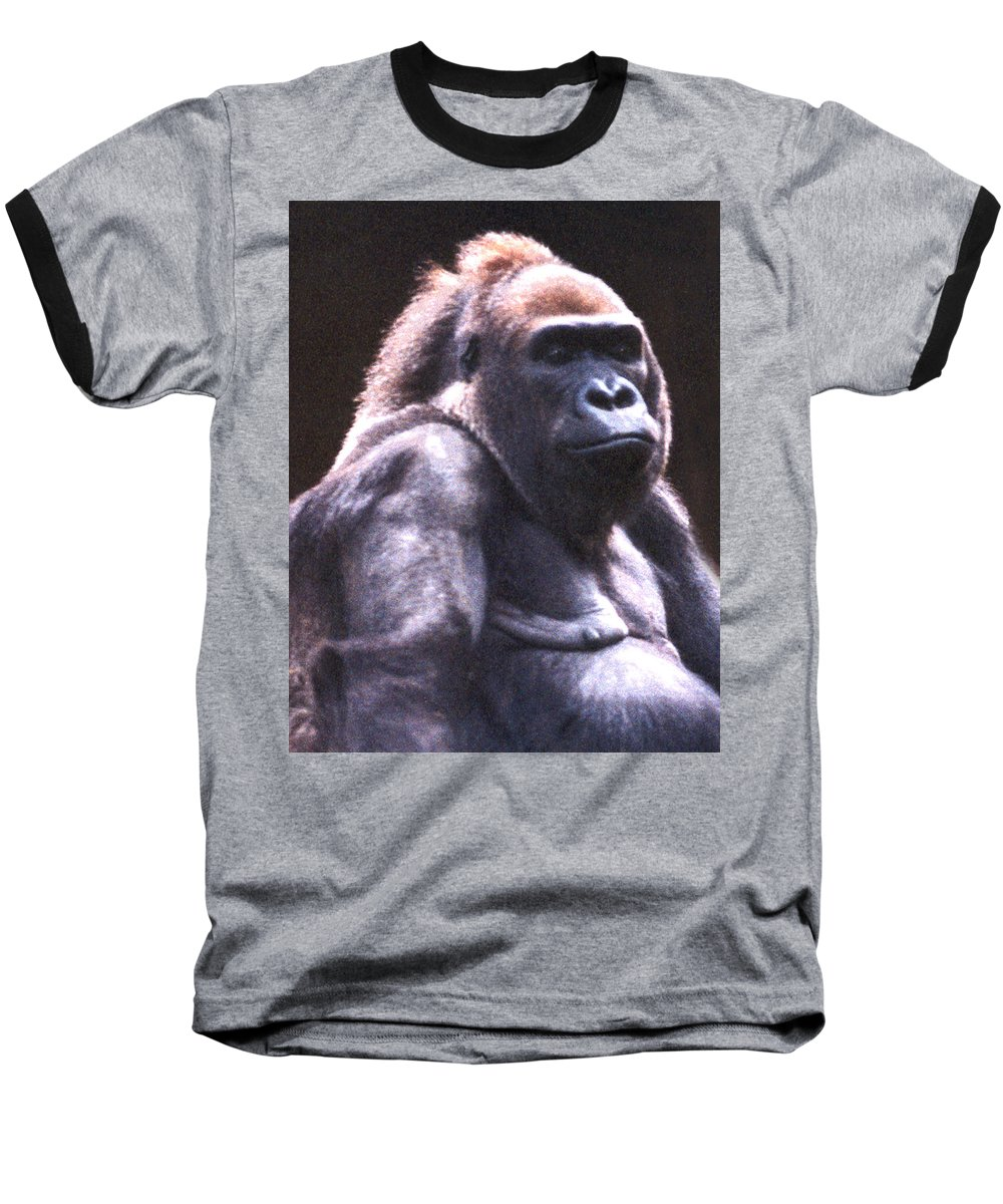 Gorilla Baseball T-Shirt featuring the photograph Gorilla by Steve Karol