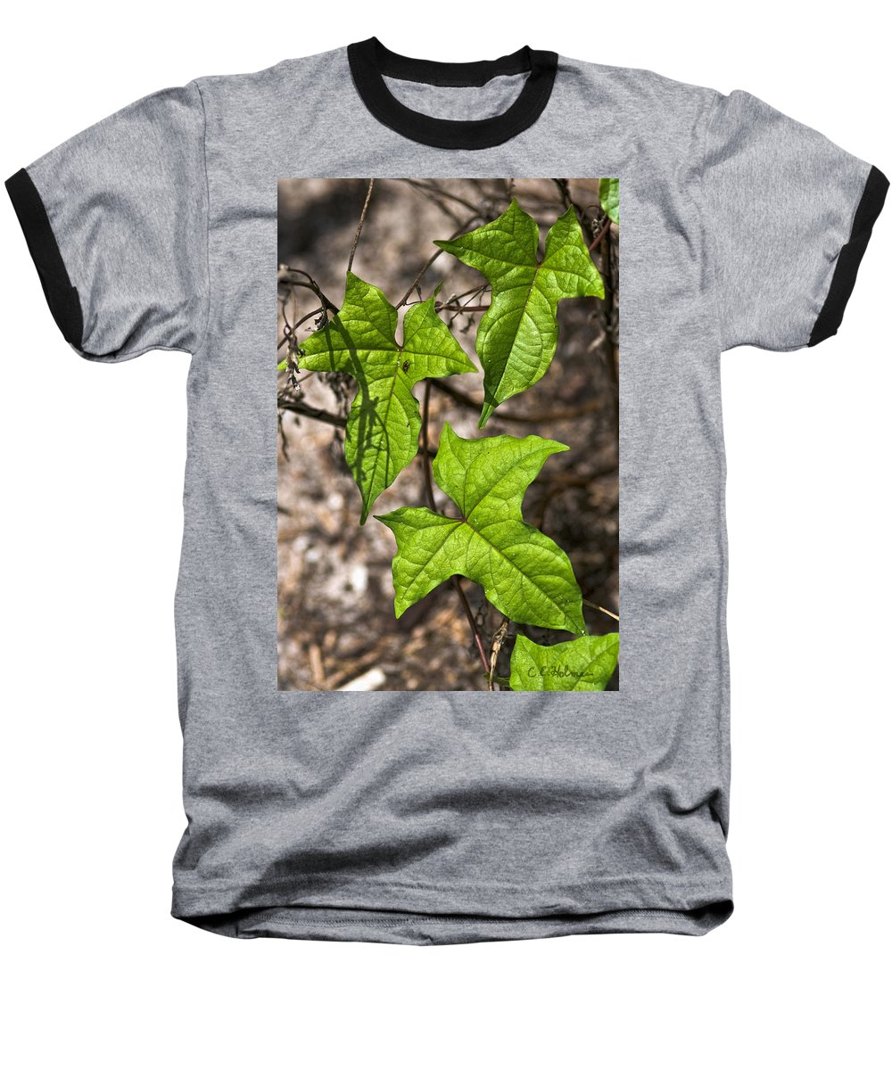 Green Baseball T-Shirt featuring the photograph Green Arrowheads by Christopher Holmes