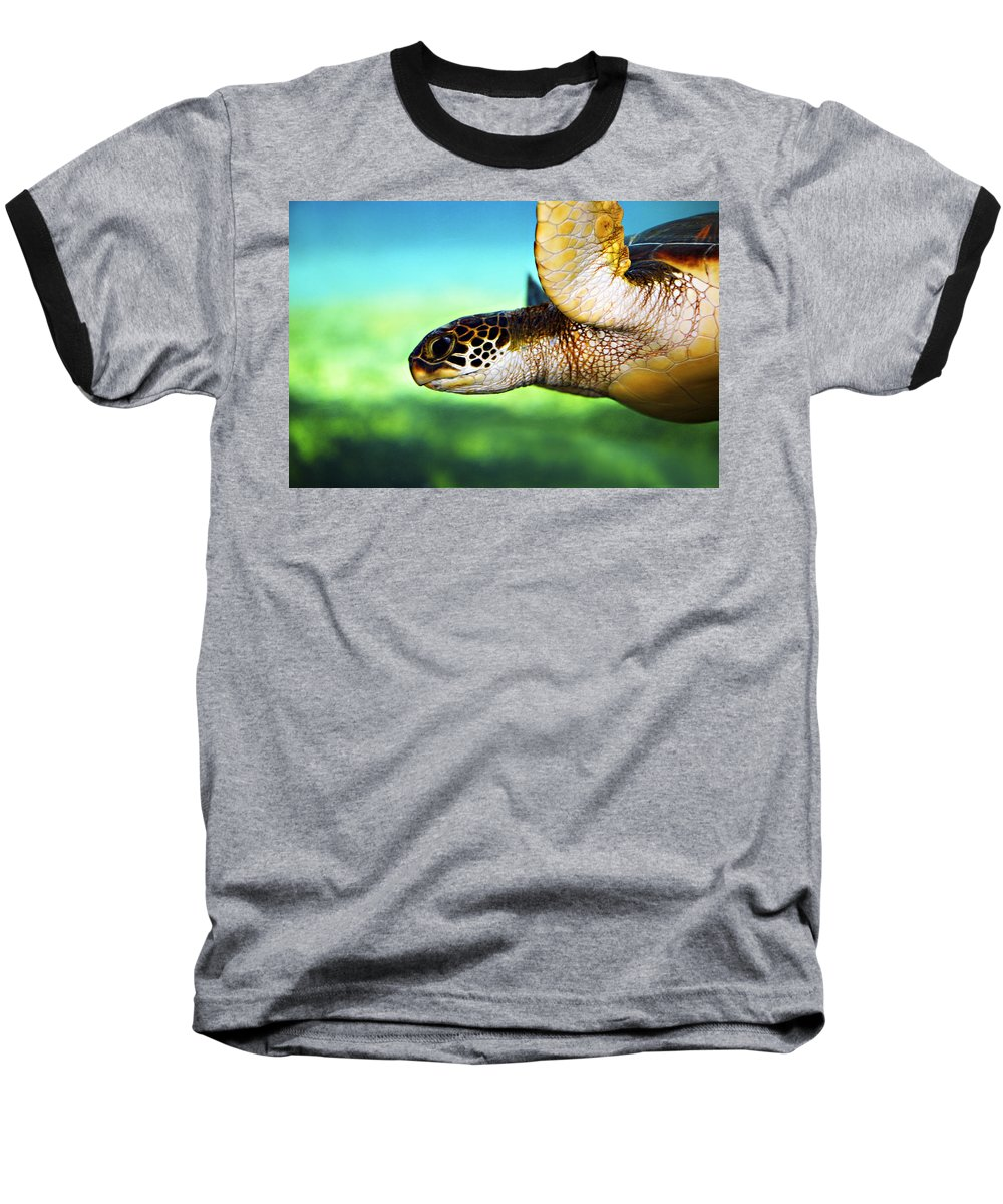 Green Baseball T-Shirt featuring the photograph Green Sea Turtle by Marilyn Hunt
