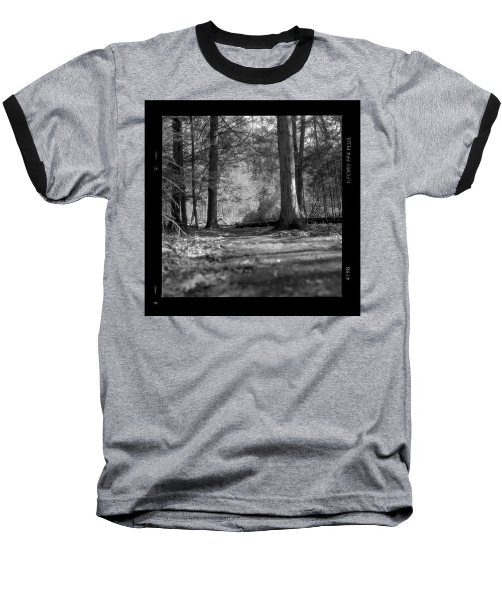 Trees Baseball T-Shirt featuring the photograph Ground Floor by Jean Macaluso