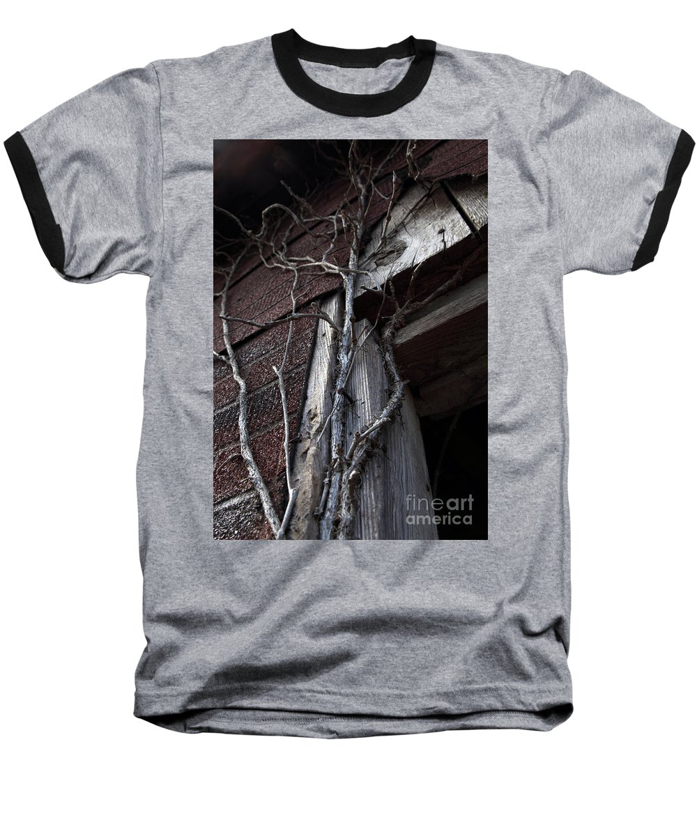 Broken Baseball T-Shirt featuring the photograph Growth by Amanda Barcon
