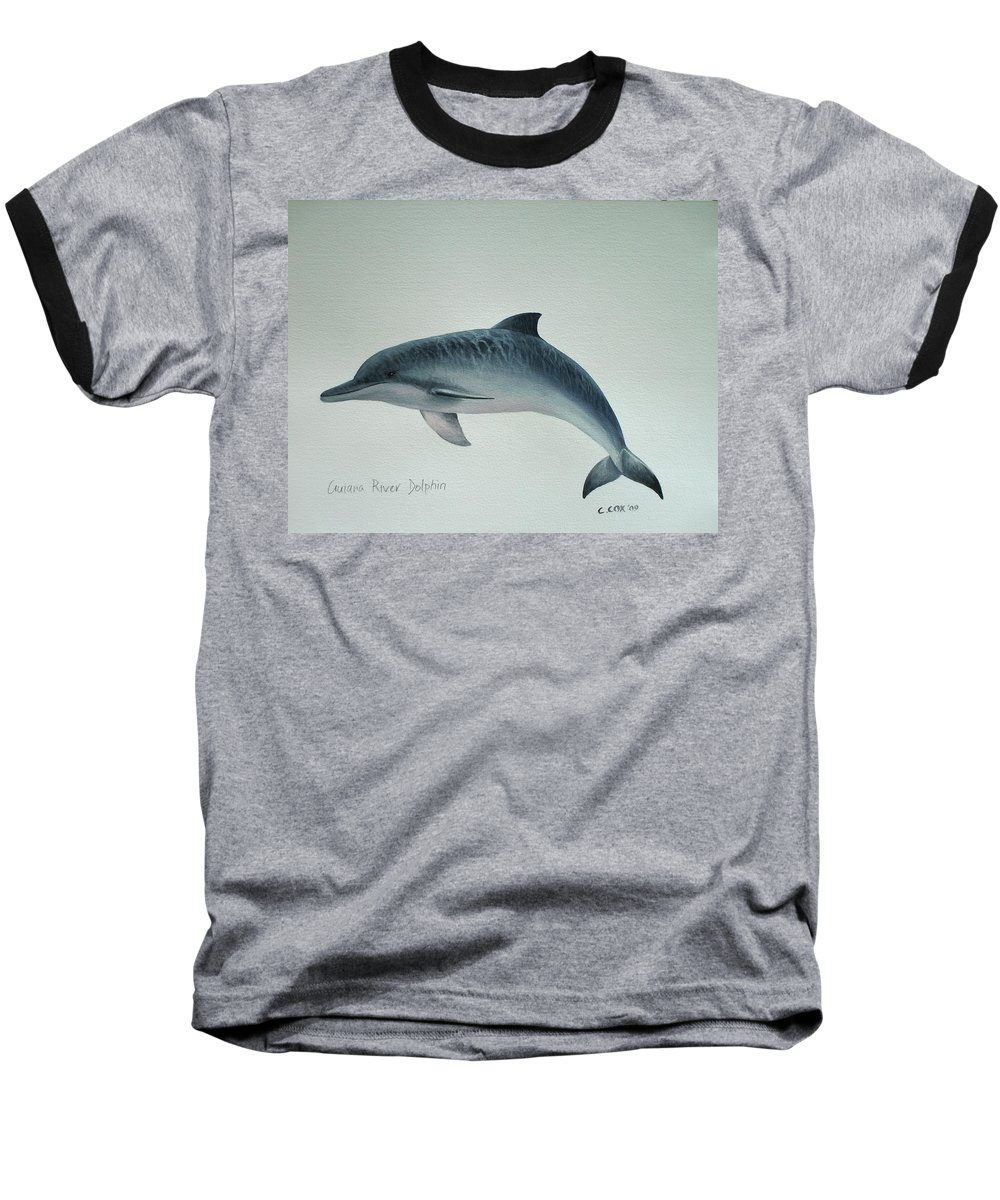 River Dolphin Baseball T-Shirt featuring the painting Guiana River Dolphin by Christopher Cox
