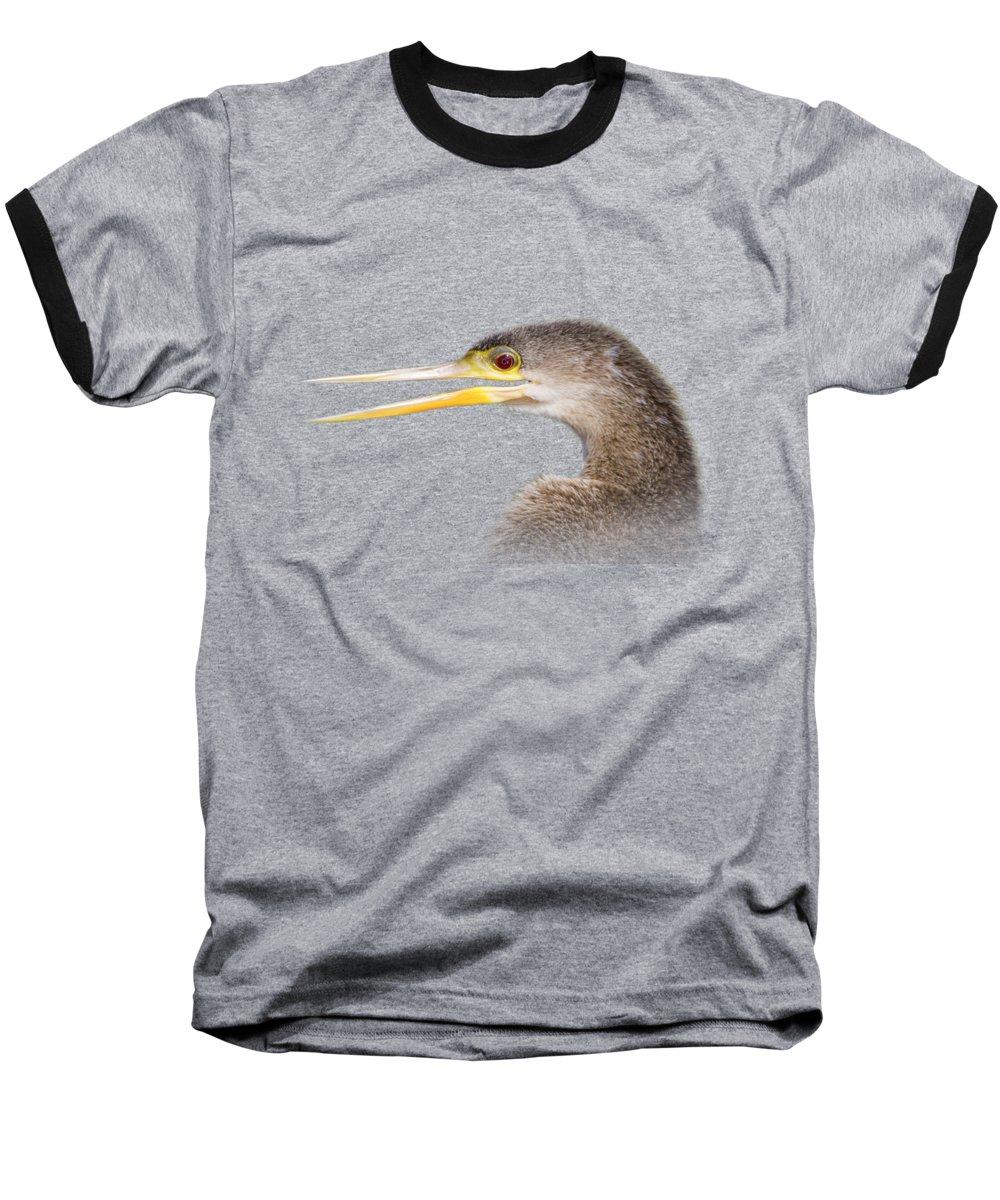 Anhinga Baseball T-Shirts