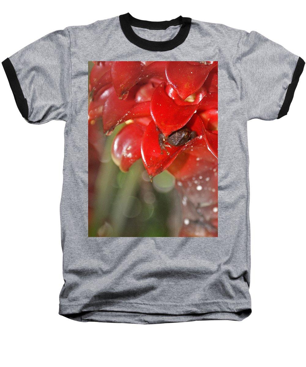 Frog Baseball T-Shirt featuring the digital art Hawaiian Frog by Heather Coen