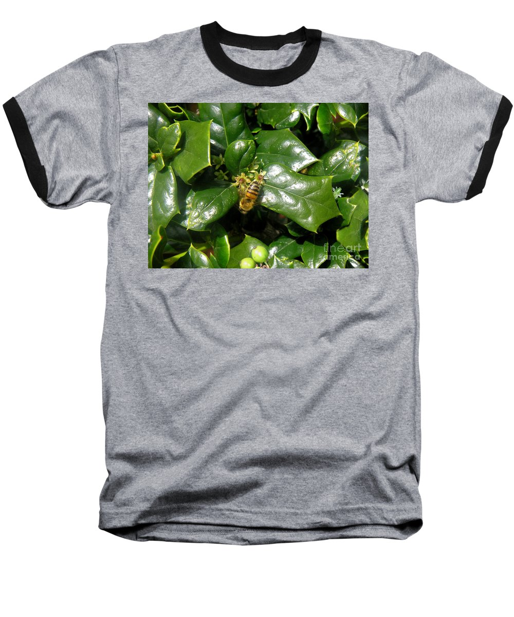 Nature Baseball T-Shirt featuring the photograph Head Over Heels In The Holly by Lucyna A M Green