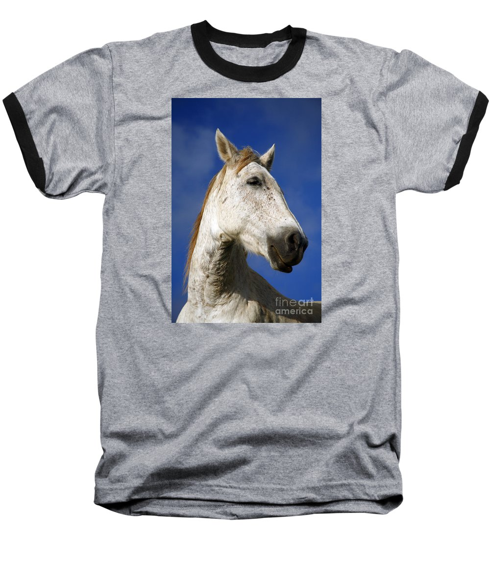 Animals Baseball T-Shirt featuring the photograph Horse Portrait by Gaspar Avila