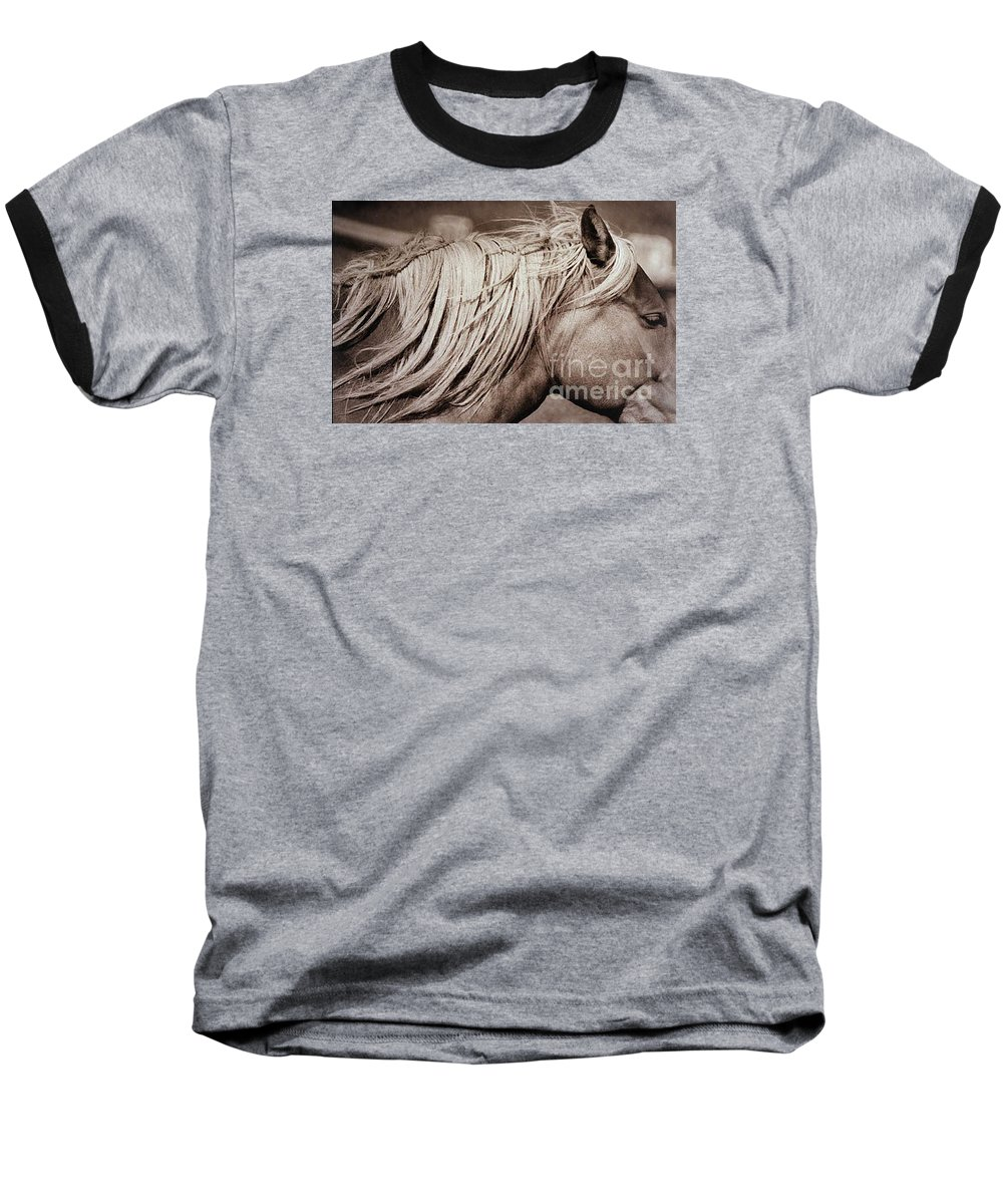 Horse Baseball T-Shirt featuring the photograph Horse's Mane by Michael Ziegler