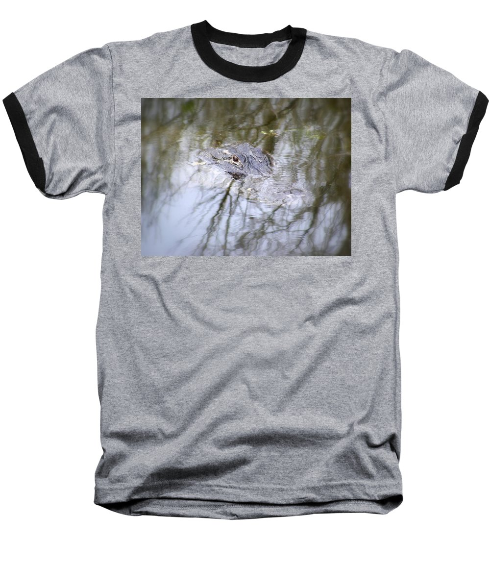 Alligator Baseball T-Shirt featuring the photograph I Am Watching by Ed Smith