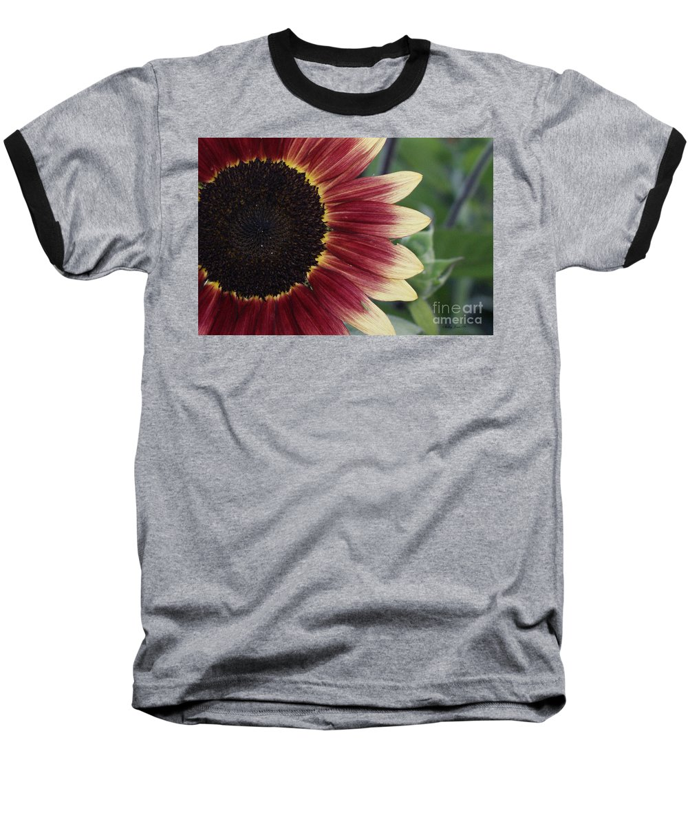 Photography Baseball T-Shirt featuring the photograph If It Makes You Happy by Shelley Jones
