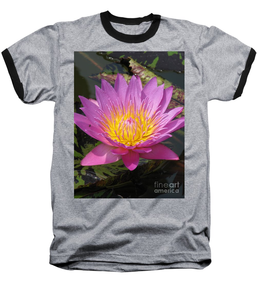 Lotus Baseball T-Shirt featuring the photograph In Position by Amanda Barcon