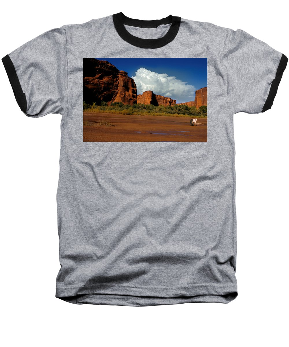 Horses Baseball T-Shirt featuring the photograph Indian Ponies In The Canyon by Jerry McElroy