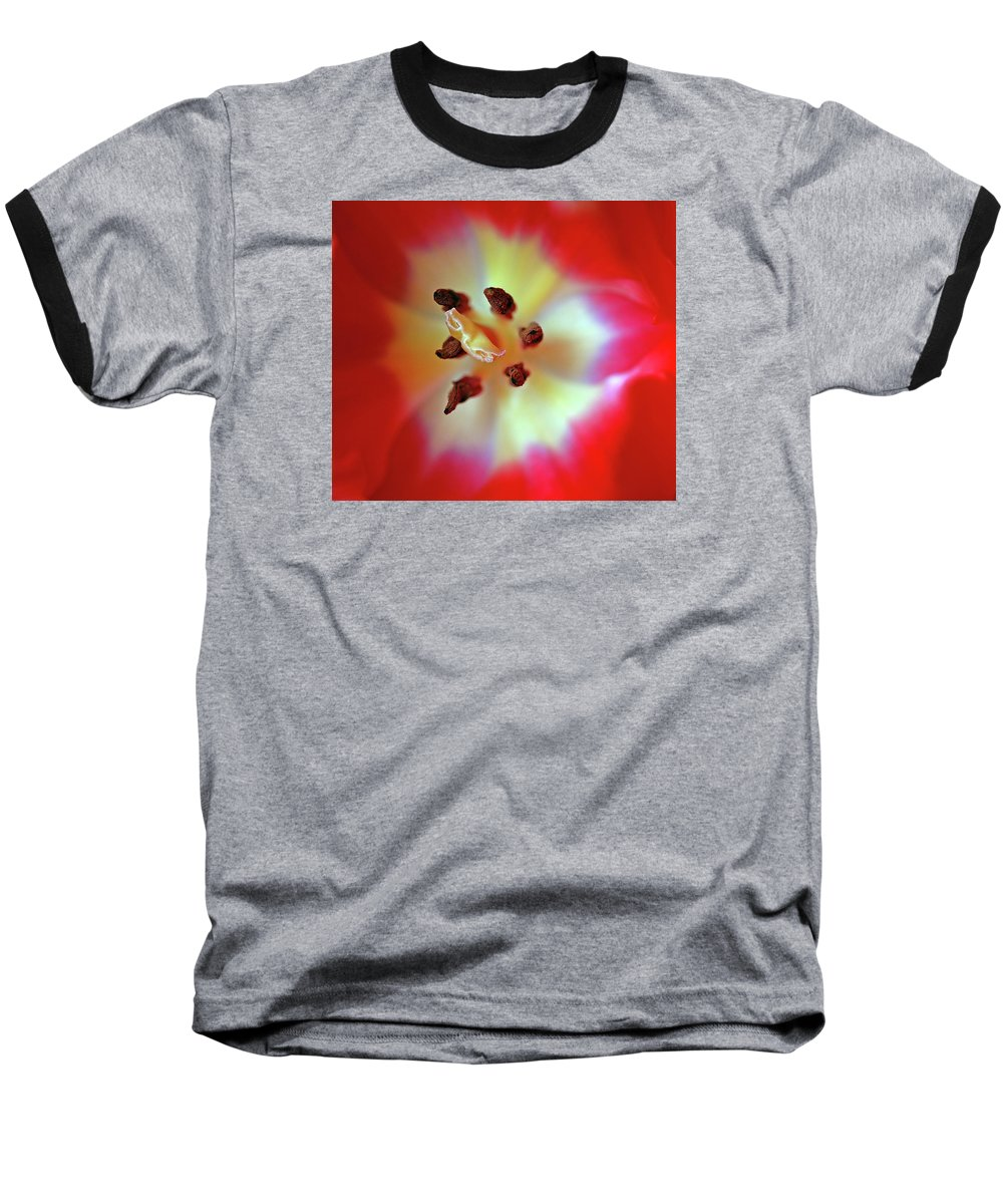Tulip Baseball T-Shirt featuring the photograph Inner Spirit by Bill Morgenstern