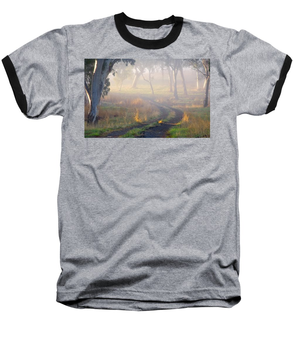Mist Baseball T-Shirt featuring the photograph Into The Mist by Mike Dawson