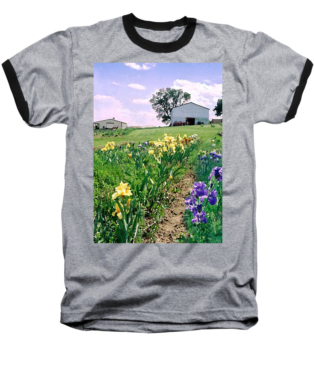 Landscape Painting Baseball T-Shirt featuring the photograph Iris Farm by Steve Karol