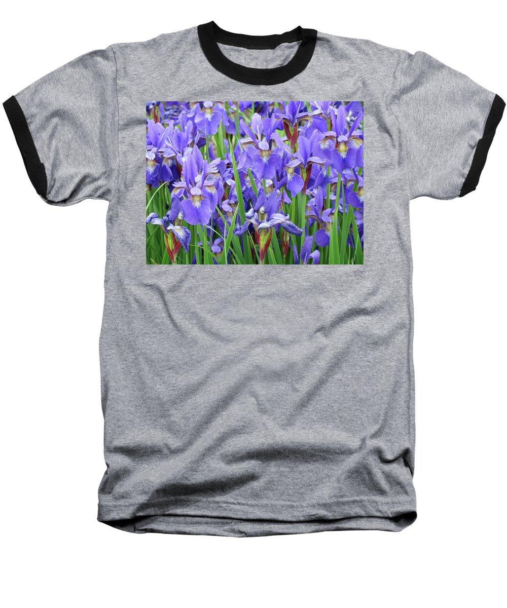 �irises Artwork� Baseball T-Shirt featuring the photograph Iris Flowers Artwork Purple Irises 9 Botanical Garden Floral Art Baslee Troutman by Baslee Troutman