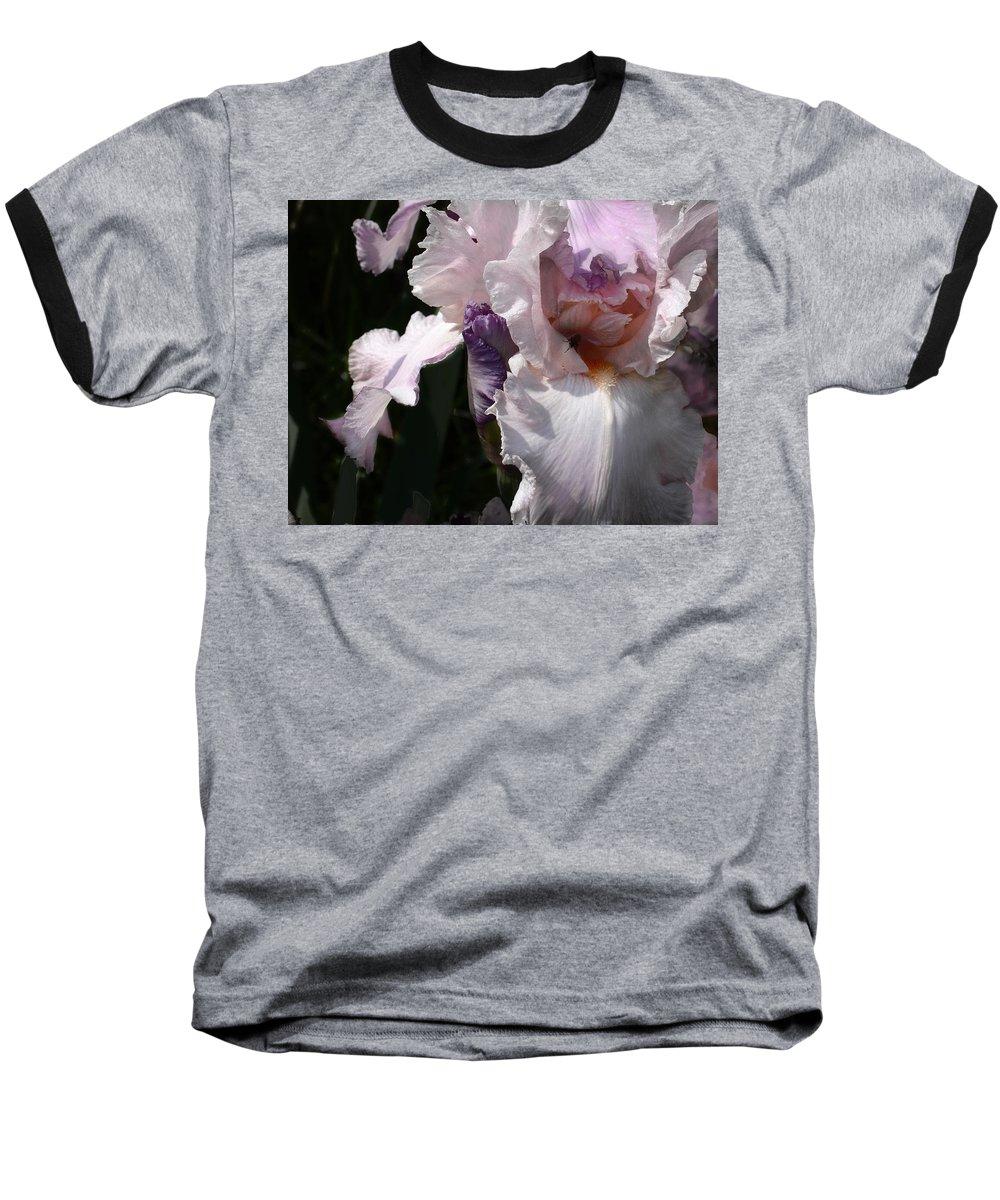 Flower Baseball T-Shirt featuring the photograph Iris Lace by Steve Karol
