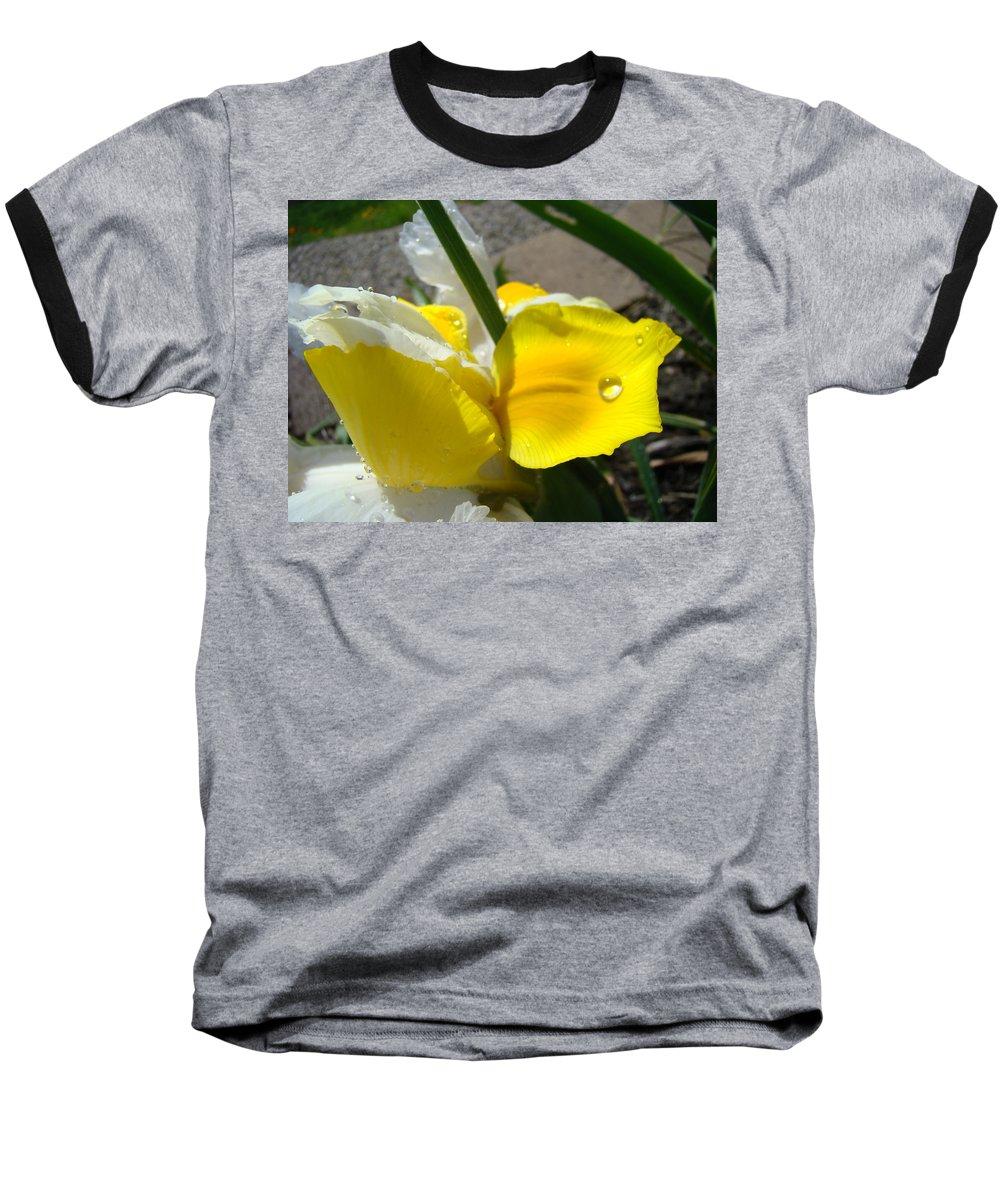 �irises Artwork� Baseball T-Shirt featuring the photograph Irises Artwork Iris Flowers Art Prints Flower Rain Drops Floral Botanical Art Baslee Troutman by Baslee Troutman