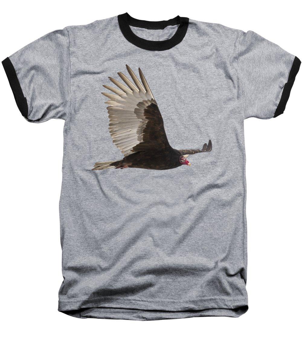 Vulture Baseball T-Shirts