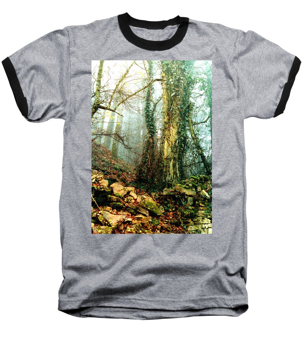 Ivy Baseball T-Shirt featuring the photograph Ivy In The Woods by Nancy Mueller