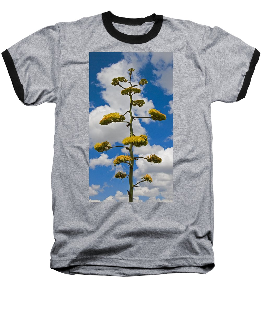 Blue Baseball T-Shirt featuring the photograph Jacobs Ladder by Skip Hunt