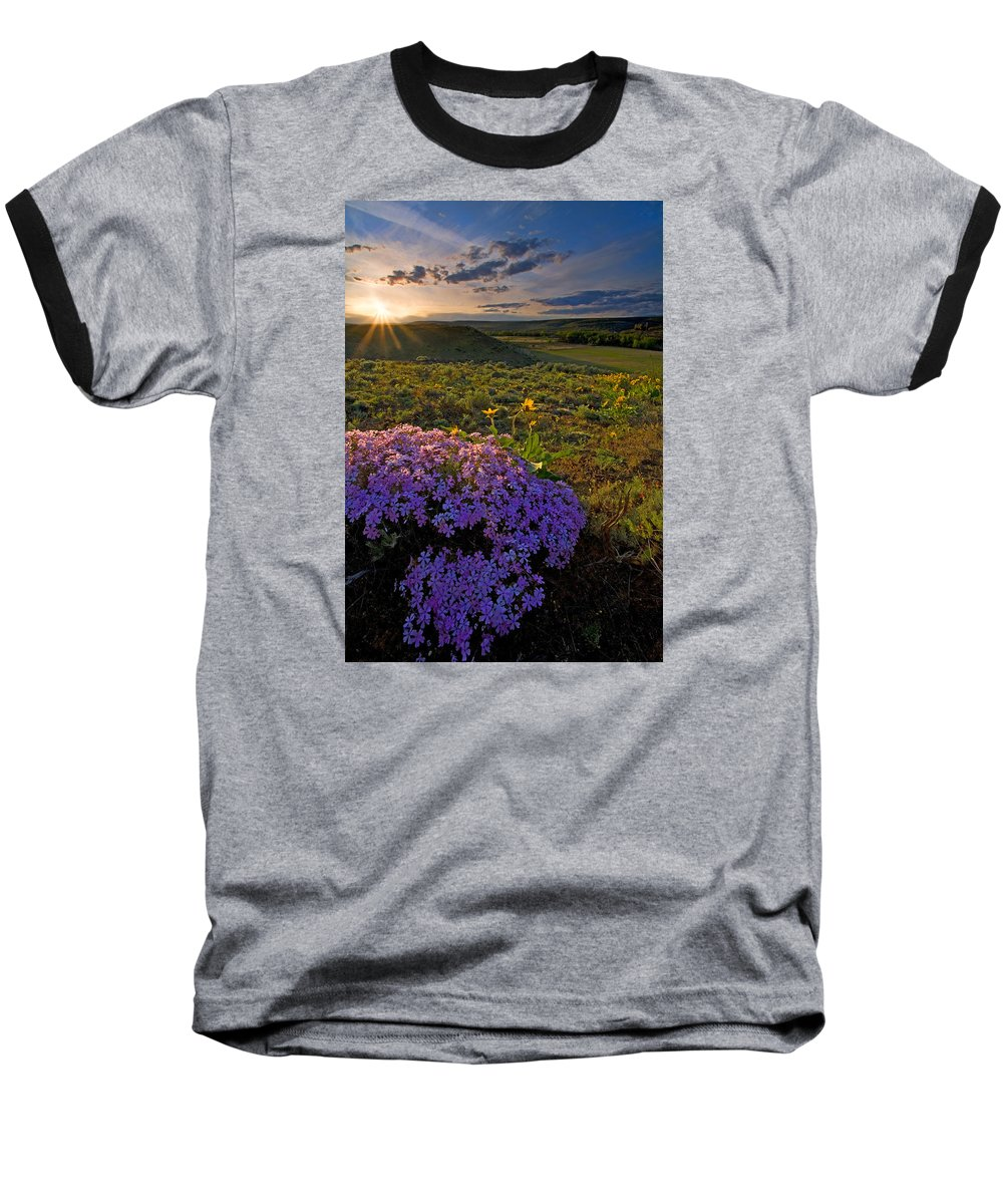 Wildflowers Baseball T-Shirt featuring the photograph Last Light Of Spring by Mike Dawson