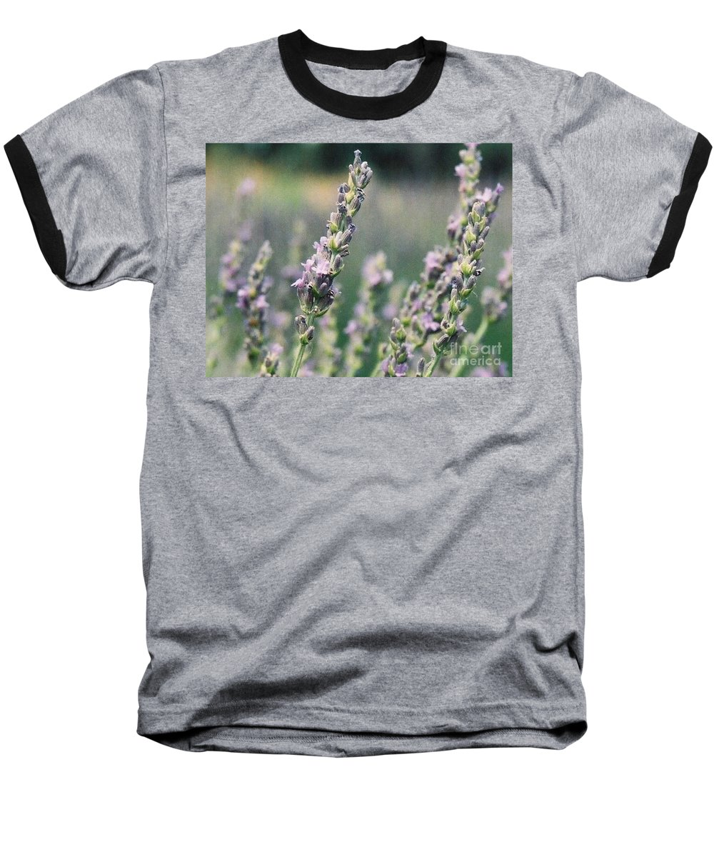 Flowers Baseball T-Shirt featuring the painting Lavender by Eric Schiabor