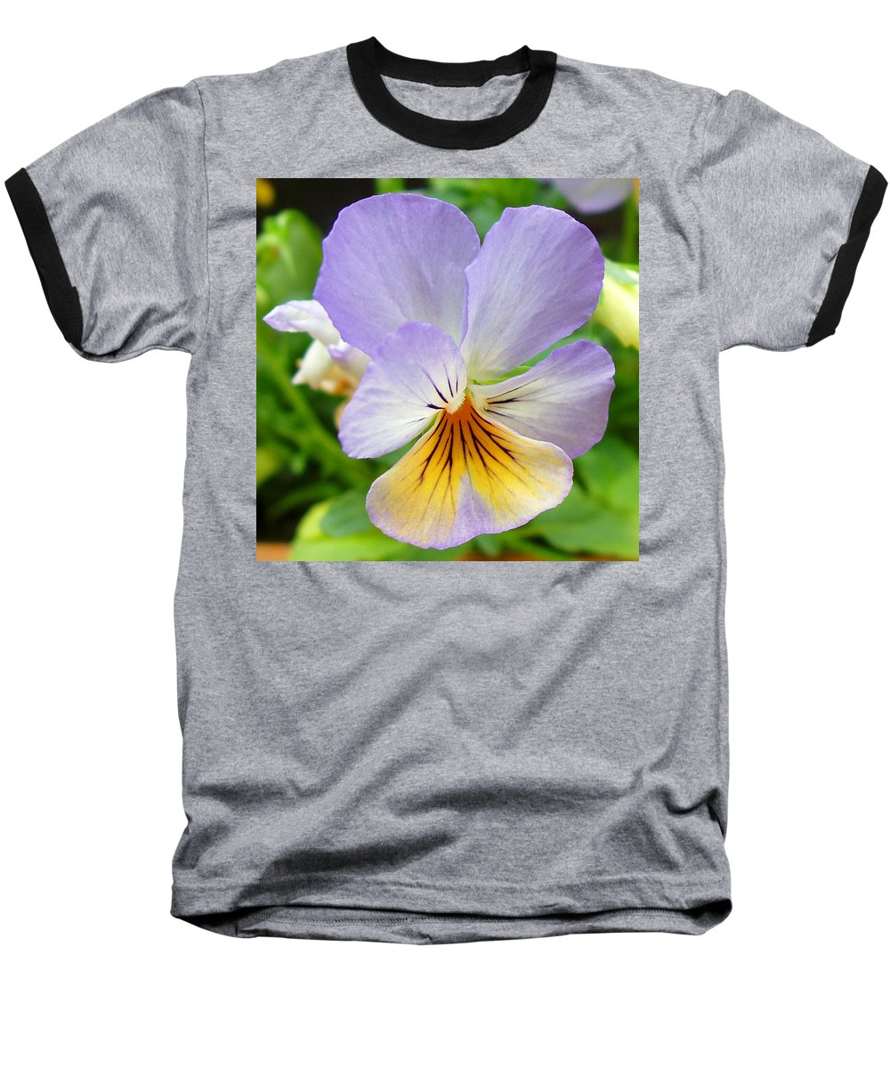 Pansy Baseball T-Shirt featuring the photograph Lavender Pansy by Nancy Mueller