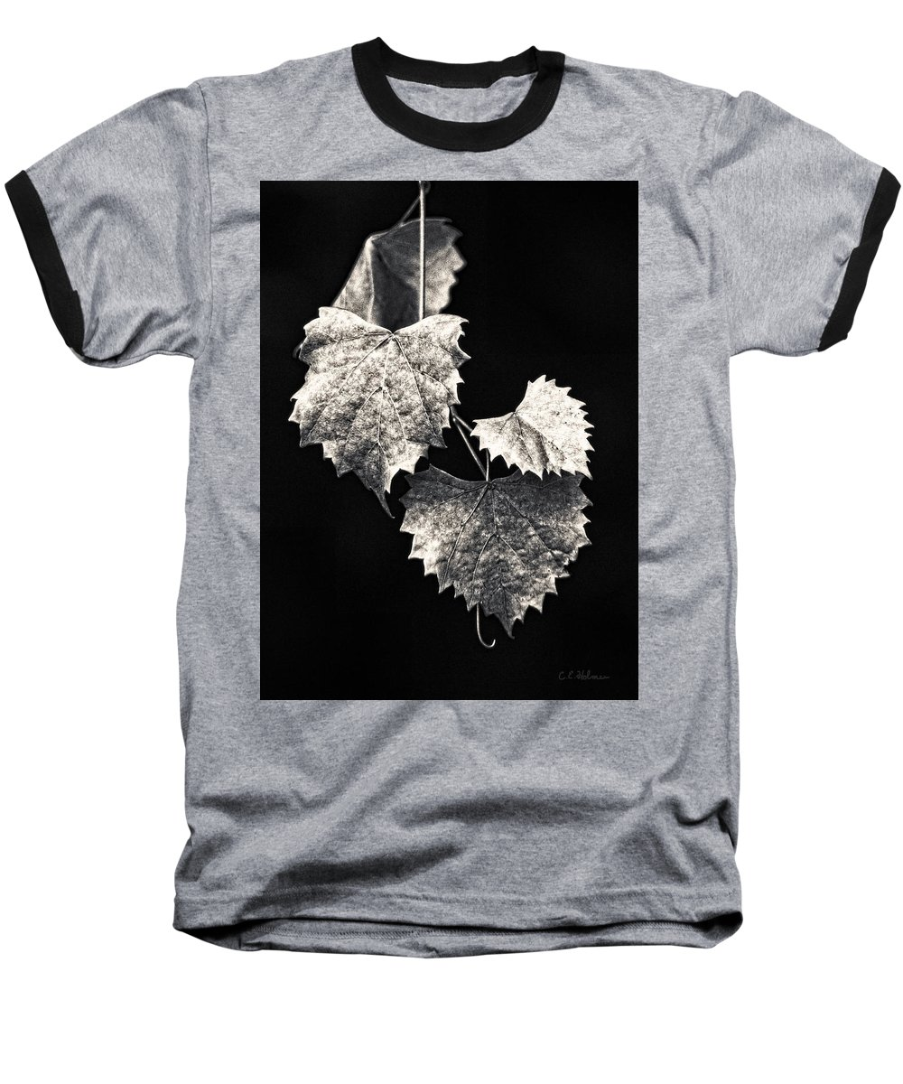 B&w Baseball T-Shirt featuring the photograph Leaves by Christopher Holmes