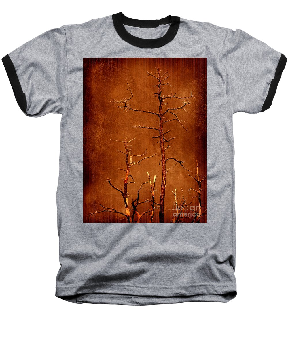 Dipasquale Baseball T-Shirt featuring the photograph Left Bare And Broken by Dana DiPasquale