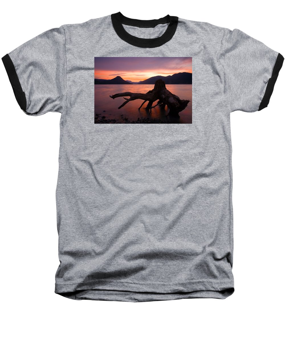 Stump Baseball T-Shirt featuring the photograph Left Behind by Mike Dawson