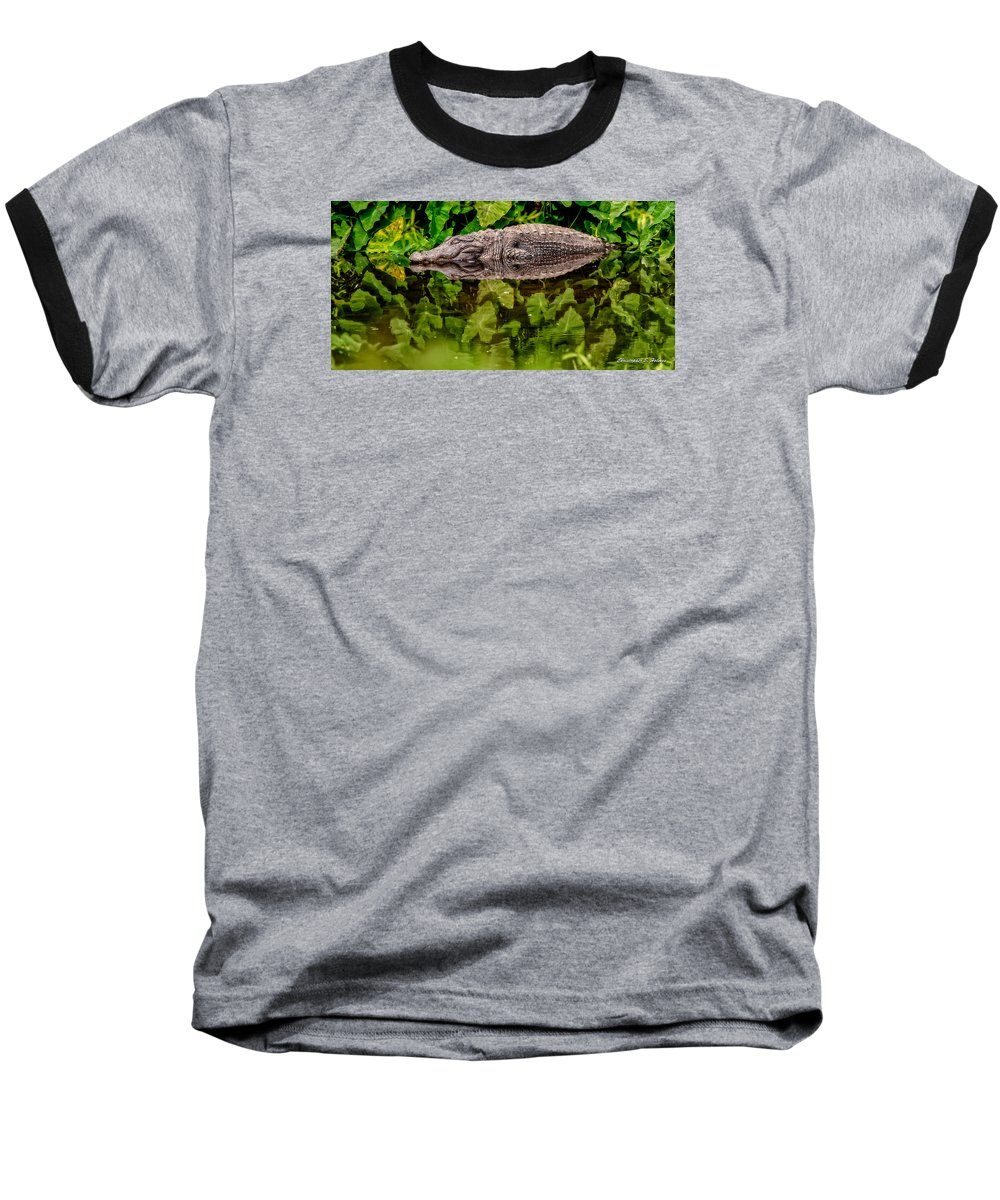 Alligator Baseball T-Shirt featuring the photograph Let Sleeping Gators Lie by Christopher Holmes