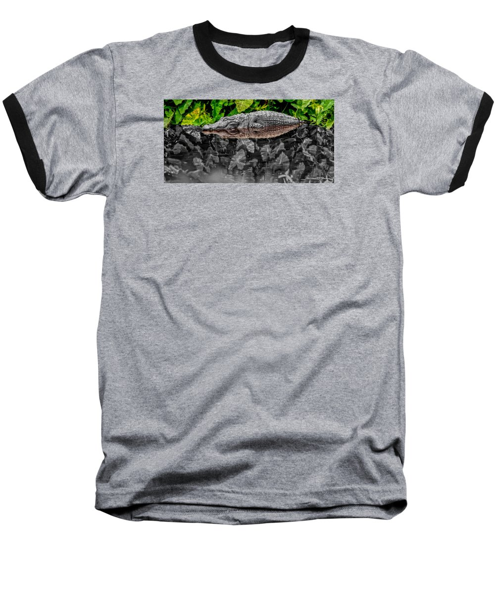 American Baseball T-Shirt featuring the photograph Let Sleeping Gators Lie - Mod by Christopher Holmes