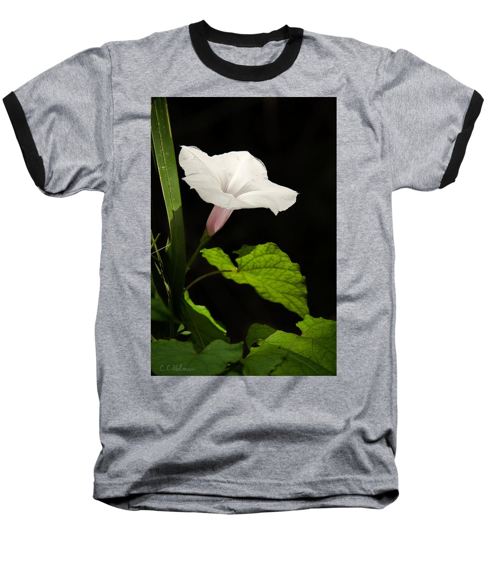 Flower Baseball T-Shirt featuring the photograph Light Out Of The Dark by Christopher Holmes
