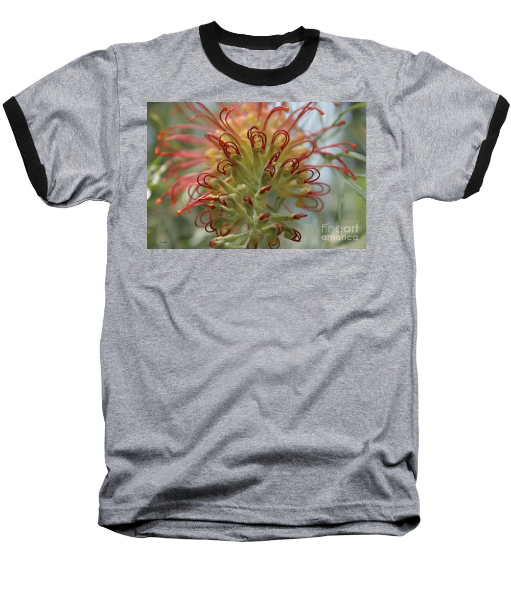 Floral Baseball T-Shirt featuring the photograph Like Stems Of A Cherry by Shelley Jones