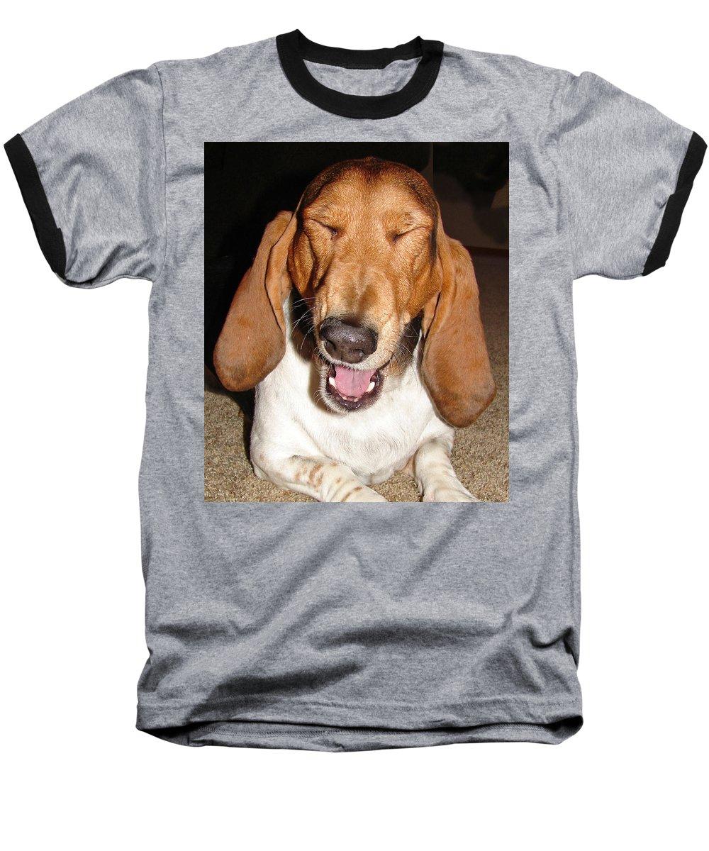 Basset Hound Baseball T-Shirt featuring the photograph Lillard by Heather Coen