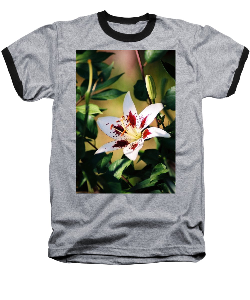 Flower Baseball T-Shirt featuring the photograph Lily by Steve Karol